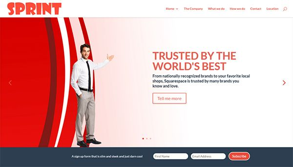 premium child themes divi